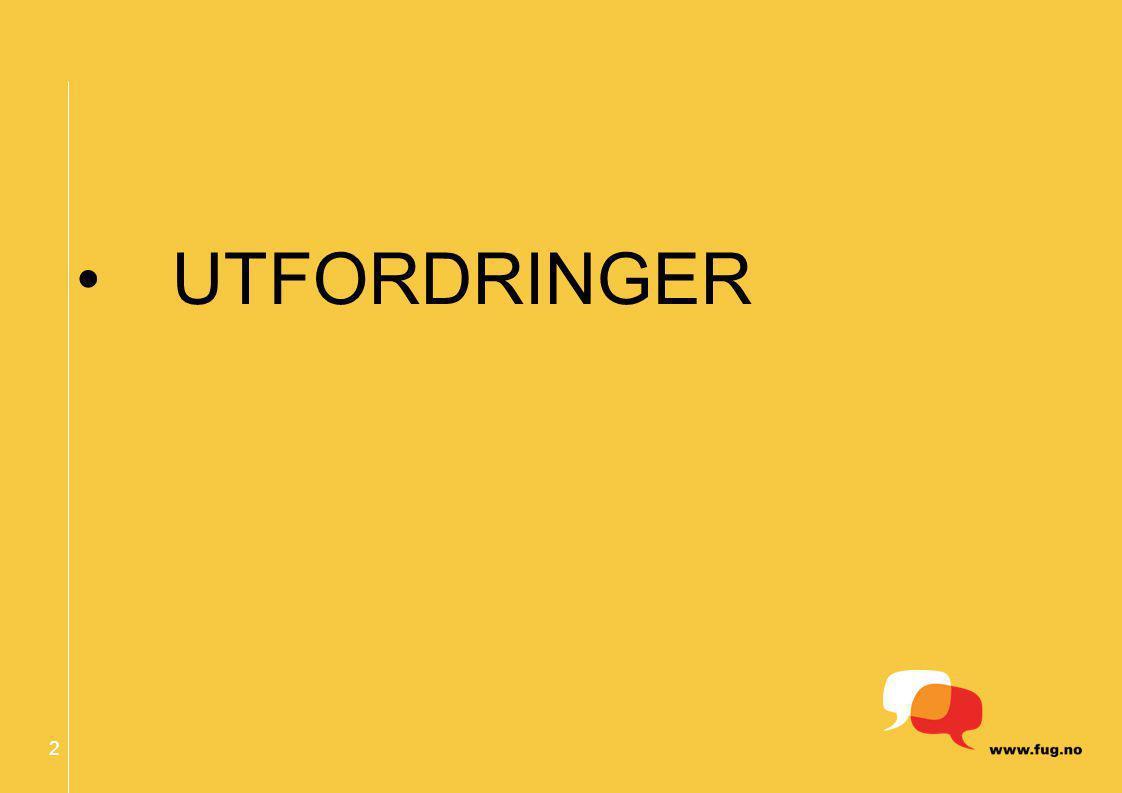 2 UTFORDRINGER