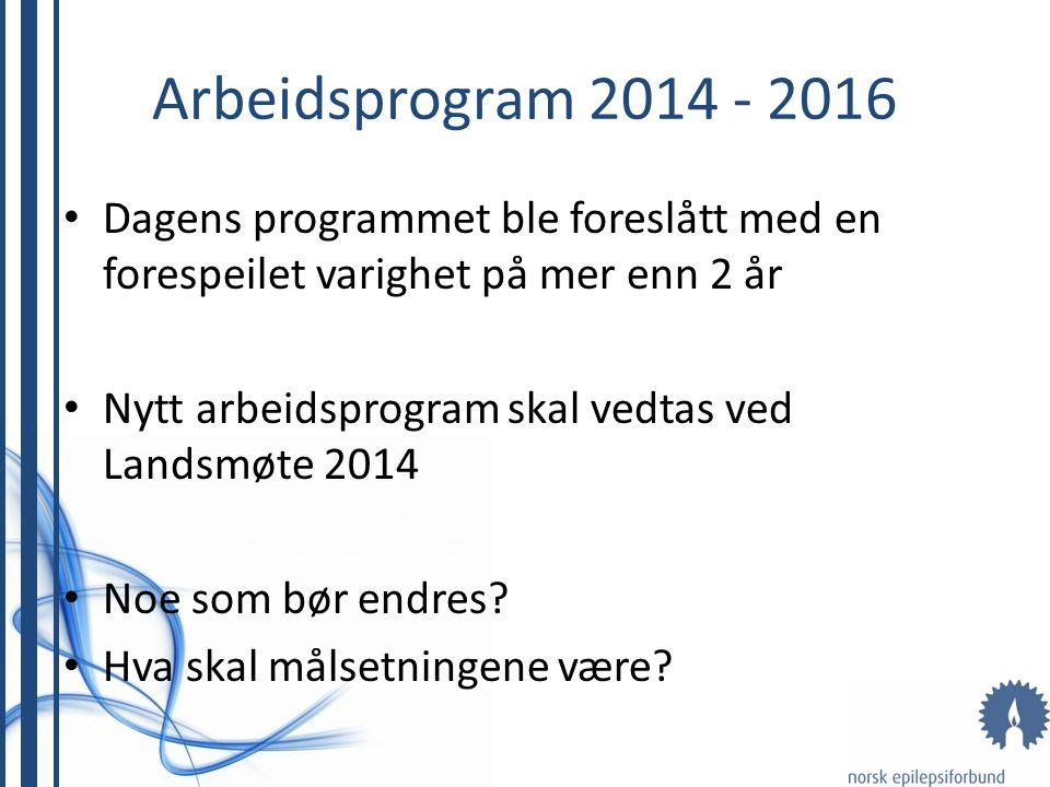 Arbeidsprogram 2014 - 2016 Dagens programmet ble foreslått med en forespeilet varighet på mer enn 2 år Nytt arbeidsprogram skal vedtas ved Landsmøte 2014 Noe som bør endres.