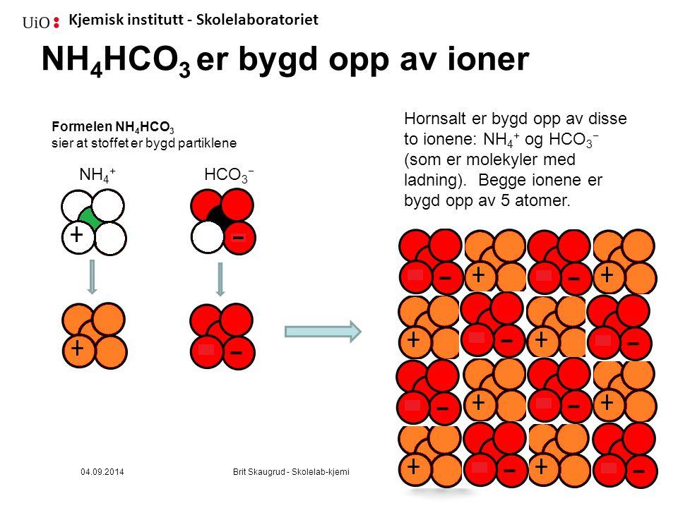 Kjemisk institutt - Skolelaboratoriet NH 4 HCO 3 er bygd opp av ioner Formelen NH 4 HCO 3 sier at stoffet er bygd partiklene Hornsalt er bygd opp av disse to ionene: NH 4 + og HCO 3 − (som er molekyler med ladning).
