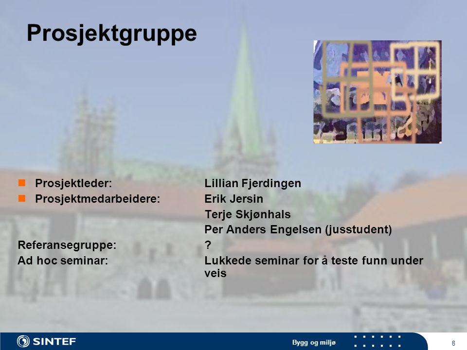 Bygg og miljø 8 Prosjektgruppe Prosjektleder: Lillian Fjerdingen Prosjektmedarbeidere:Erik Jersin Terje Skjønhals Per Anders Engelsen (jusstudent) Ref