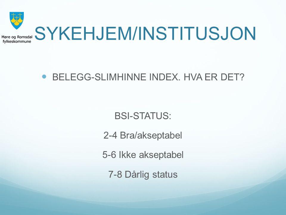 SYKEHJEM/INSTITUSJON BELEGG-SLIMHINNE INDEX. HVA ER DET? BSI-STATUS: 2-4 Bra/akseptabel 5-6 Ikke akseptabel 7-8 Dårlig status