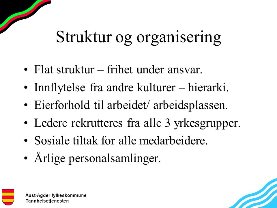 Aust-Agder fylkeskommune Tannhelsetjenesten Struktur og organisering Flat struktur – frihet under ansvar. Innflytelse fra andre kulturer – hierarki. E