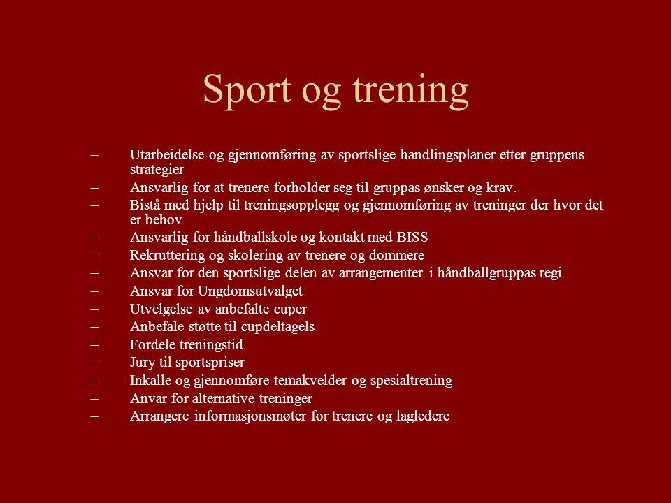 Sport og trening –Utarbeidelse og gjennomføring av sportslige handlingsplaner etter gruppens strategier –Ansvarlig for at trenere forholder seg til gr