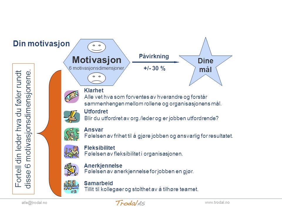 Din motivasjon Motivasjon 6 motivasjonsdimensjoner Dine mål +/- 30 % Klarhet Utfordret Ansvar Fleksibilitet Anerkjennelse Samarbeid Alle vet hva som forventes av hverandre og forstår sammenhengen mellom rollene og organisasjonens mål.