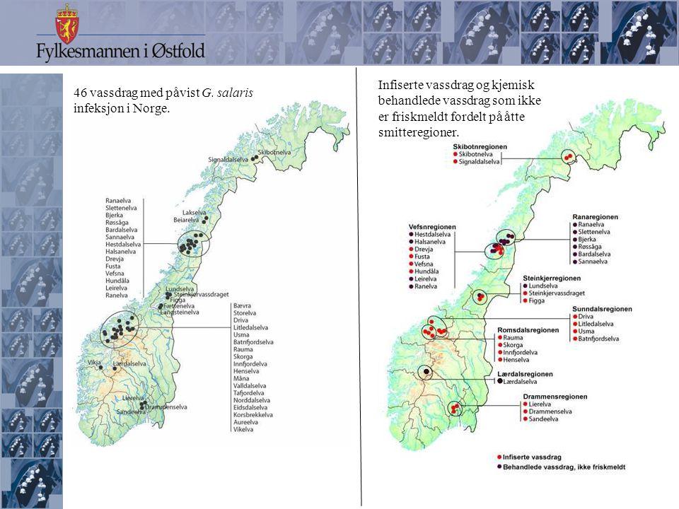 46 vassdrag med påvist G. salaris infeksjon i Norge.