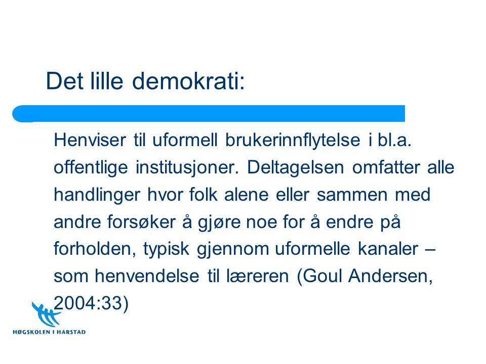 Det lille demokrati: Henviser til uformell brukerinnflytelse i bl.a. offentlige institusjoner. Deltagelsen omfatter alle handlinger hvor folk alene el
