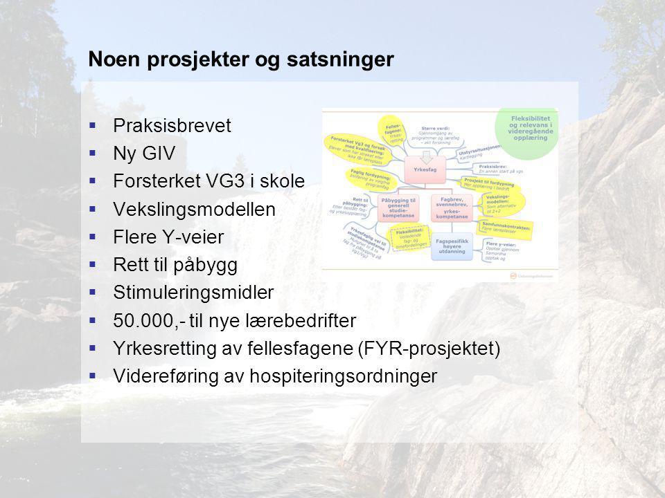 Noen prosjekter og satsninger  Praksisbrevet  Ny GIV  Forsterket VG3 i skole  Vekslingsmodellen  Flere Y-veier  Rett til påbygg  Stimuleringsmidler  50.000,- til nye lærebedrifter  Yrkesretting av fellesfagene (FYR-prosjektet)  Videreføring av hospiteringsordninger