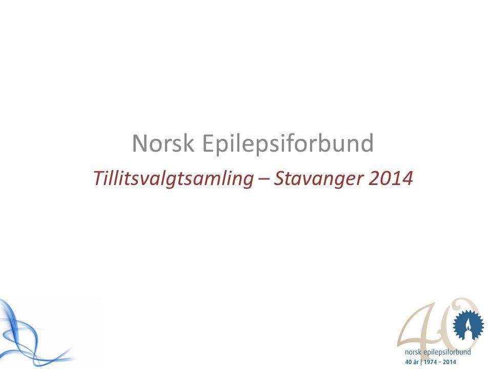 Norsk Epilepsiforbund Tillitsvalgtsamling – Stavanger 2014