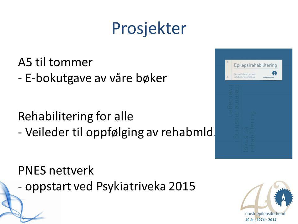 Prosjekter A5 til tommer - E-bokutgave av våre bøker Rehabilitering for alle - Veileder til oppfølging av rehabmld. PNES nettverk - oppstart ved Psyki