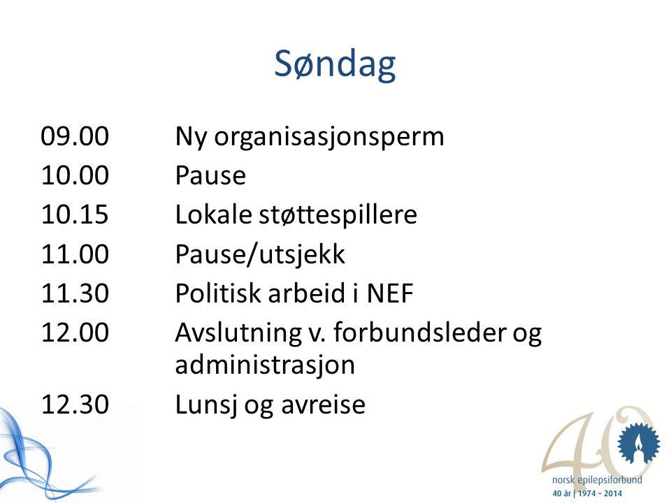 Søndag 09.00Ny organisasjonsperm 10.00Pause 10.15Lokale støttespillere 11.00Pause/utsjekk 11.30Politisk arbeid i NEF 12.00Avslutning v. forbundsleder
