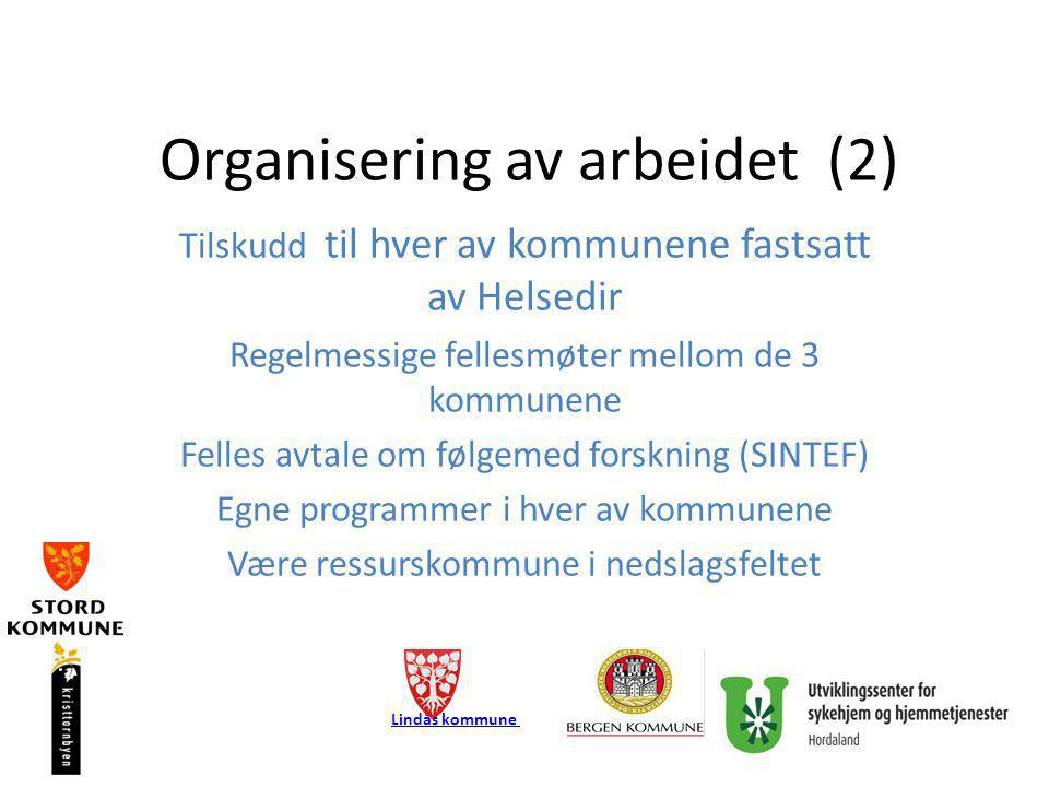 Organisering av arbeidet (2) Tilskudd til hver av kommunene fastsatt av Helsedir Regelmessige fellesmøter mellom de 3 kommunene Felles avtale om følge