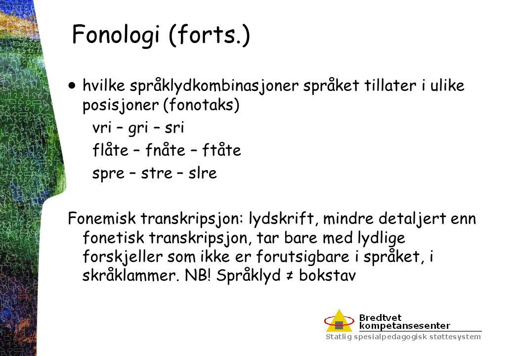 Fonologi (forts.)  hvilke språklydkombinasjoner språket tillater i ulike posisjoner (fonotaks) vri – gri – sri flåte – fnåte – ftåte spre – stre – sl
