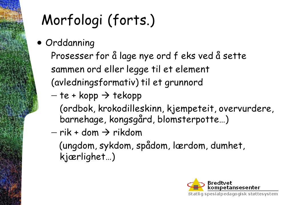 Morfologi (forts.)  Orddanning Prosesser for å lage nye ord f eks ved å sette sammen ord eller legge til et element (avledningsformativ) til et grunn