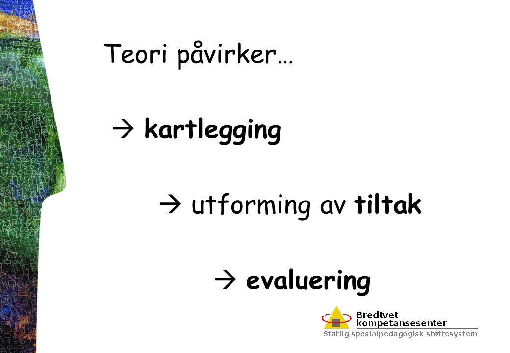 Teori  et felles metaspråk for å beskrive et fenomen/problem  en plattform å velge og vurdere metodiske tiltak ut fra