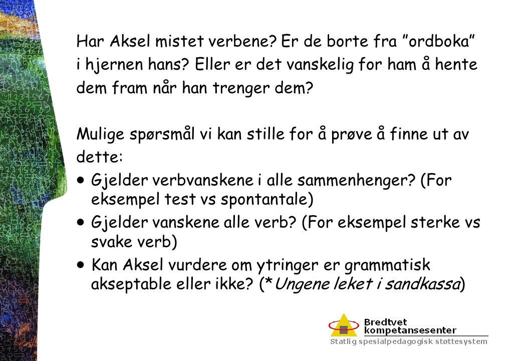 """Har Aksel mistet verbene? Er de borte fra """"ordboka"""" i hjernen hans? Eller er det vanskelig for ham å hente dem fram når han trenger dem? Mulige spørsm"""