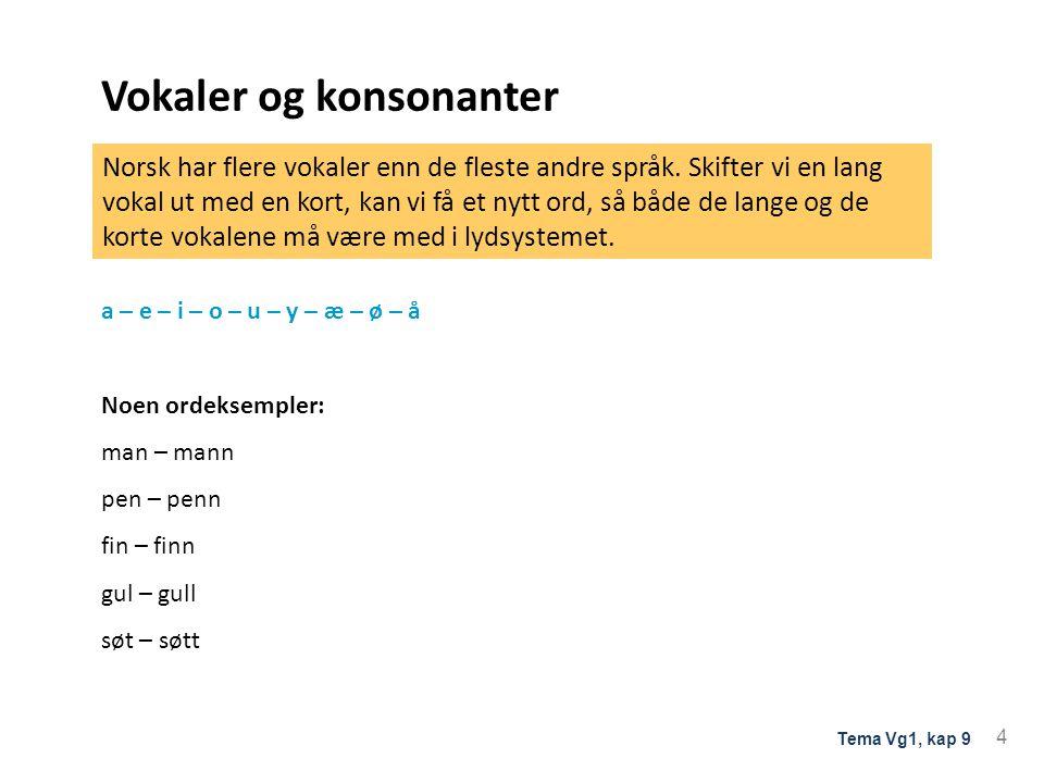 Vokaler og konsonanter De lydene som et språk bruker til å skille ord fra hverandre, er en del av språkets lydsystem. d a l g a l Rulle-r og skarre-r