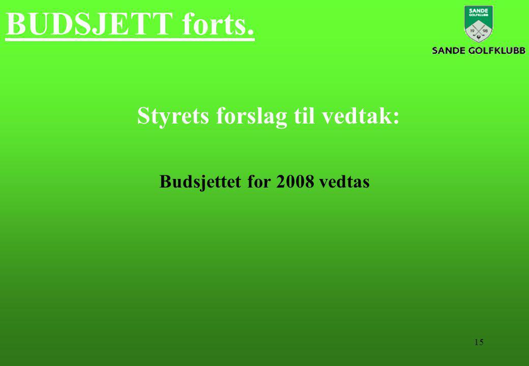 15 BUDSJETT forts. Styrets forslag til vedtak: Budsjettet for 2008 vedtas