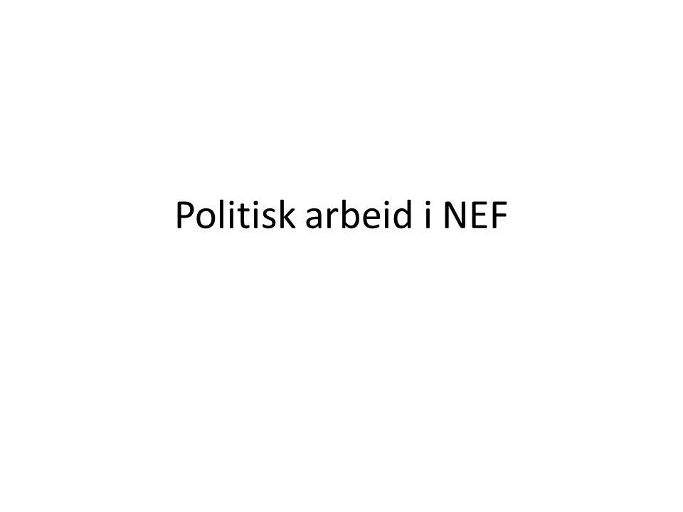 Politisk arbeid i NEF