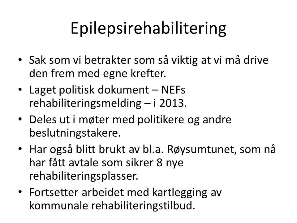 Epilepsirehabilitering Sak som vi betrakter som så viktig at vi må drive den frem med egne krefter.