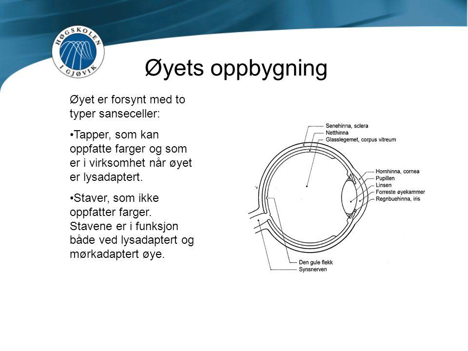 Øyets oppbygning Øyet er forsynt med to typer sanseceller: Tapper, som kan oppfatte farger og som er i virksomhet når øyet er lysadaptert. Staver, som