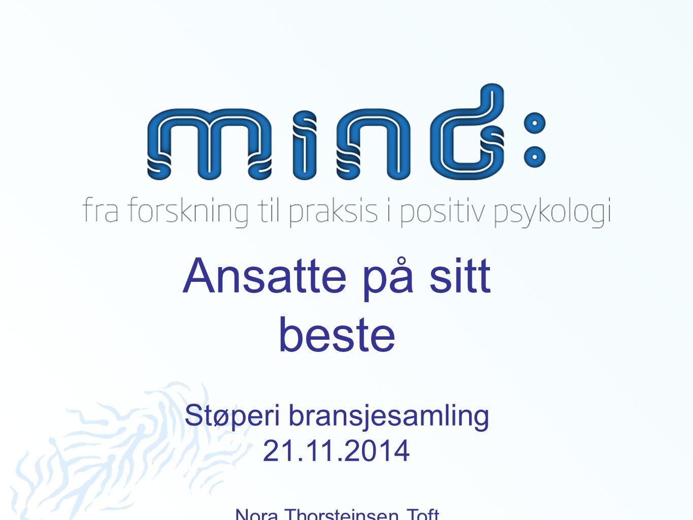 Ansatte på sitt beste Støperi bransjesamling 21.11.2014 Nora Thorsteinsen Toft