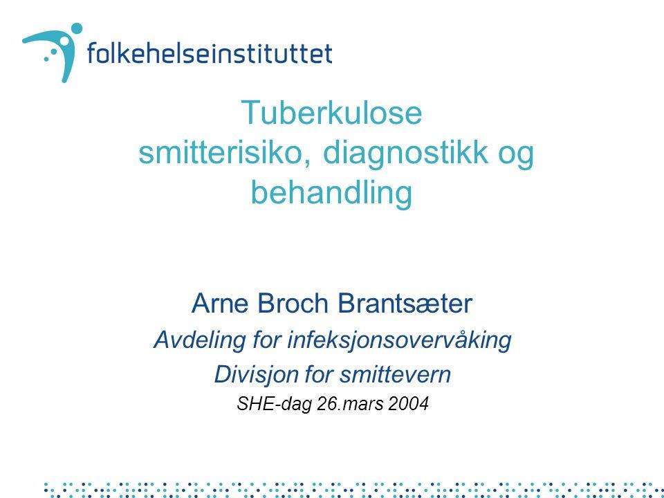Tuberkulose smitterisiko, diagnostikk og behandling Arne Broch Brantsæter Avdeling for infeksjonsovervåking Divisjon for smittevern SHE-dag 26.mars 2004