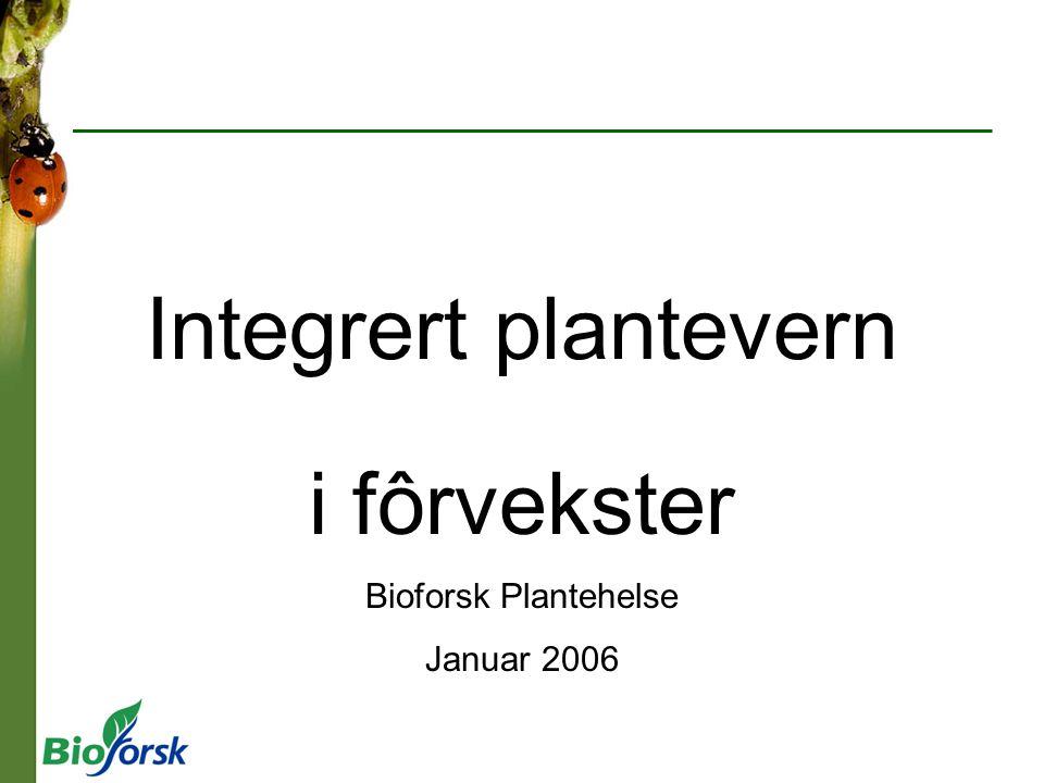 Integrert plantevern i fôrvekster Bioforsk Plantehelse Januar 2006