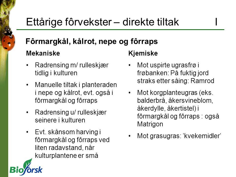 Ettårige fôrvekster – direkte tiltak I Mekaniske Radrensing m/ rulleskjær tidlig i kulturen Manuelle tiltak i planteraden i nepe og kålrot, evt. også