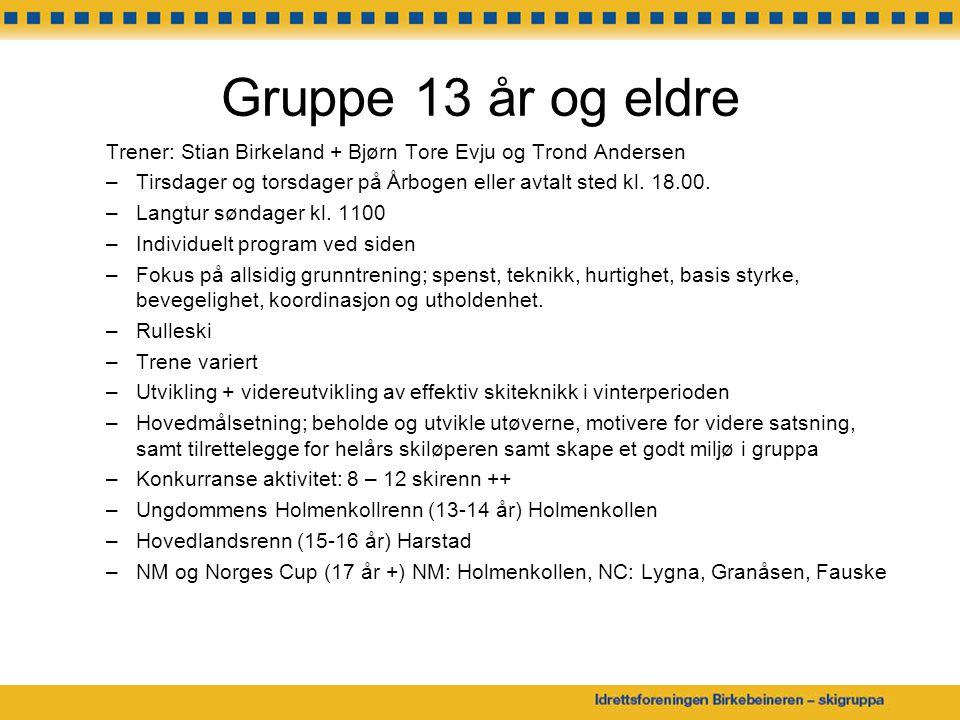 Gruppe 13 år og eldre Trener: Stian Birkeland + Bjørn Tore Evju og Trond Andersen –Tirsdager og torsdager på Årbogen eller avtalt sted kl.