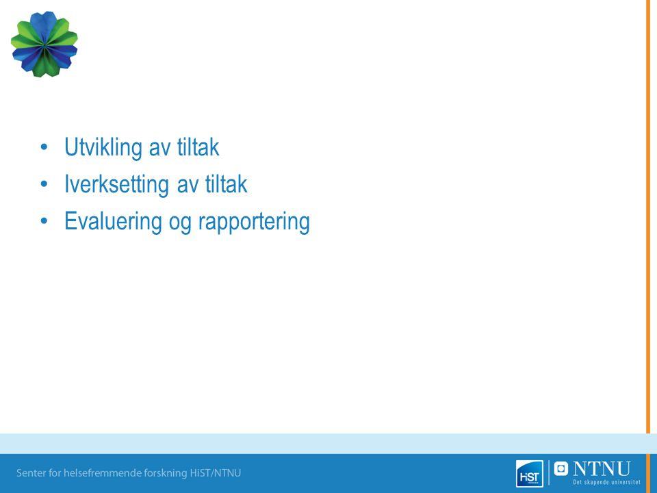 Utvikling av tiltak Iverksetting av tiltak Evaluering og rapportering