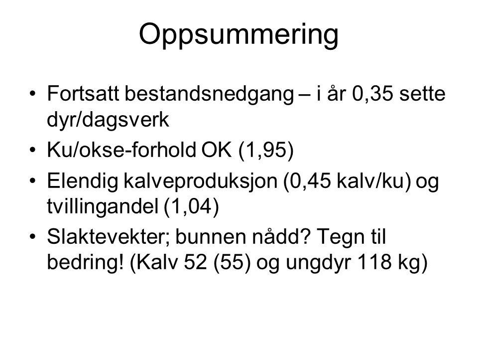 Oppsummering Fortsatt bestandsnedgang – i år 0,35 sette dyr/dagsverk Ku/okse-forhold OK (1,95) Elendig kalveproduksjon (0,45 kalv/ku) og tvillingandel (1,04) Slaktevekter; bunnen nådd.