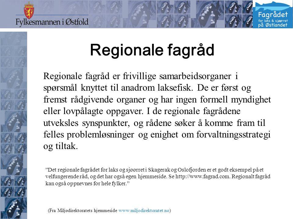 Regionale fagråd Regionale fagråd er frivillige samarbeidsorganer i spørsmål knyttet til anadrom laksefisk.