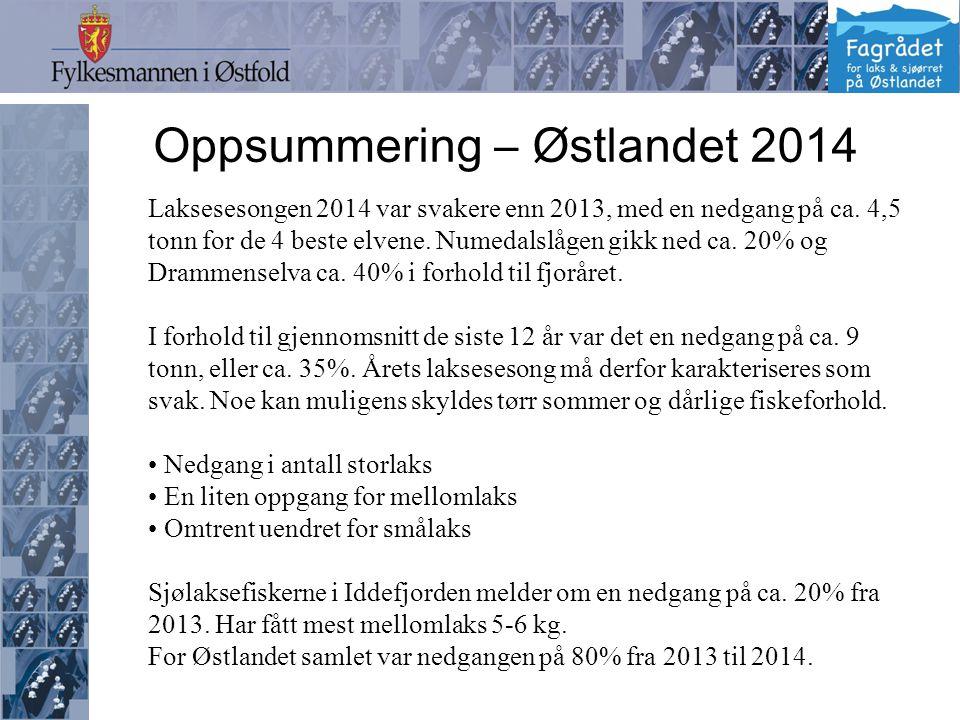 Oppsummering – Østlandet 2014 Laksesesongen 2014 var svakere enn 2013, med en nedgang på ca.