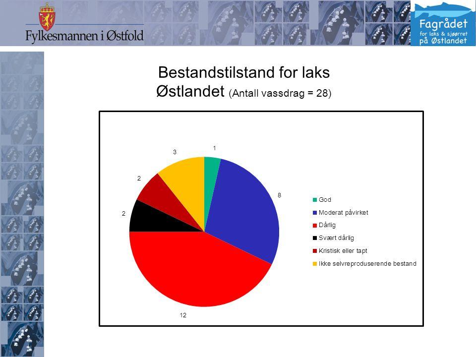 Bestandstilstand for laks Østlandet (Antall vassdrag = 28)
