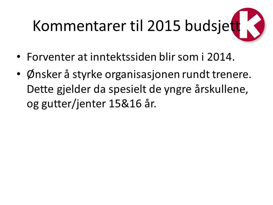Kommentarer til 2015 budsjett Forventer at inntektssiden blir som i 2014.