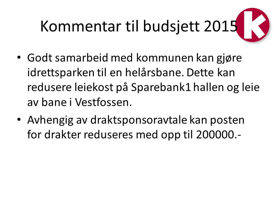 Kommentar til budsjett 2015 Fornuftig bruk av hall/leid bane samt god draktavtale vil kunne frigjøre midler til stor satsing på lavere årskull og 15/16 årskullene.