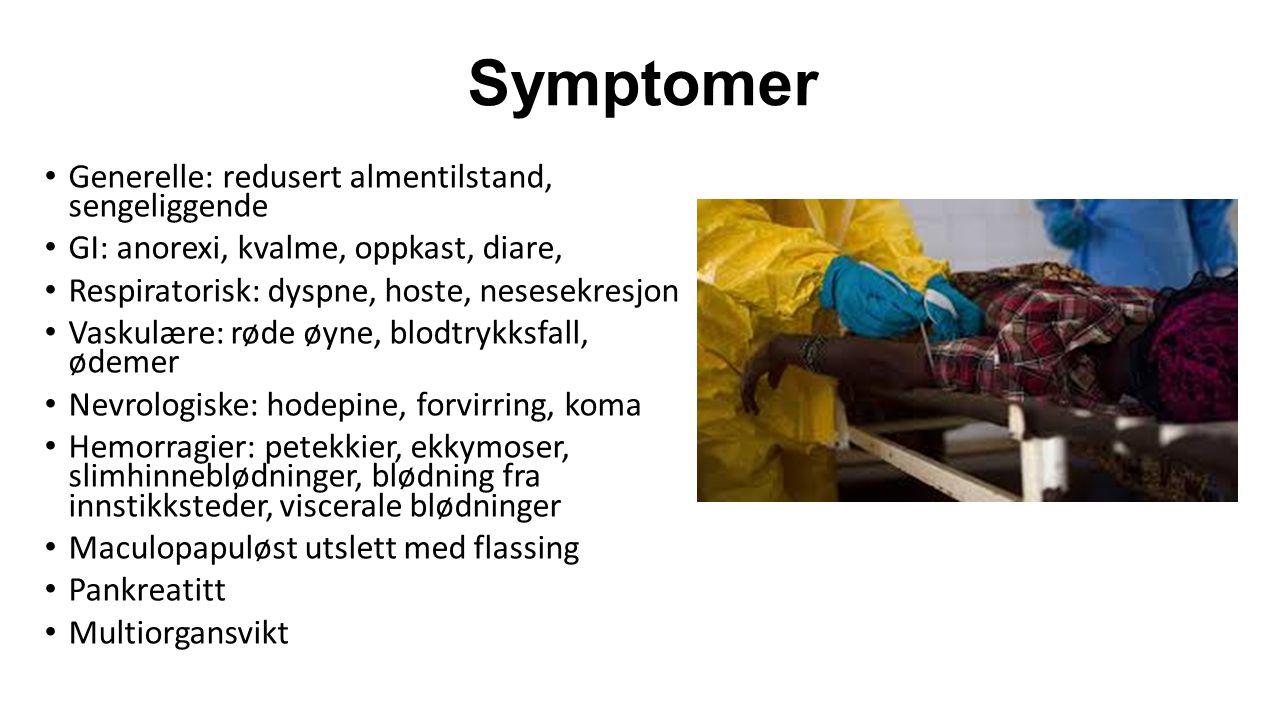 Symptomer Generelle: redusert almentilstand, sengeliggende GI: anorexi, kvalme, oppkast, diare, Respiratorisk: dyspne, hoste, nesesekresjon Vaskulære: