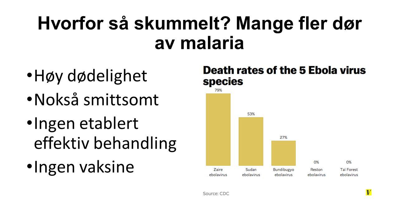 Hvorfor så skummelt? Mange fler dør av malaria Høy dødelighet Nokså smittsomt Ingen etablert effektiv behandling Ingen vaksine