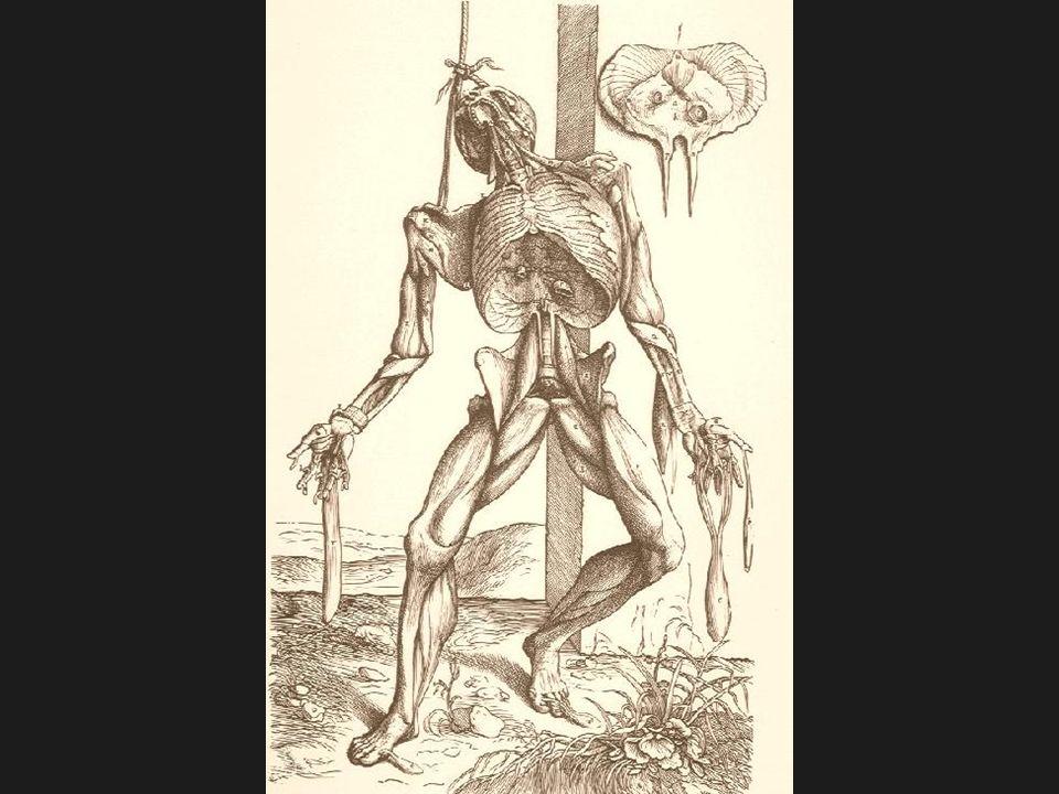 Pasientene levende Aadsler Skrækkebilleder for deres Medmennesker. Frankenau, Det offentlige Sundhedspolitie, 1801, s.