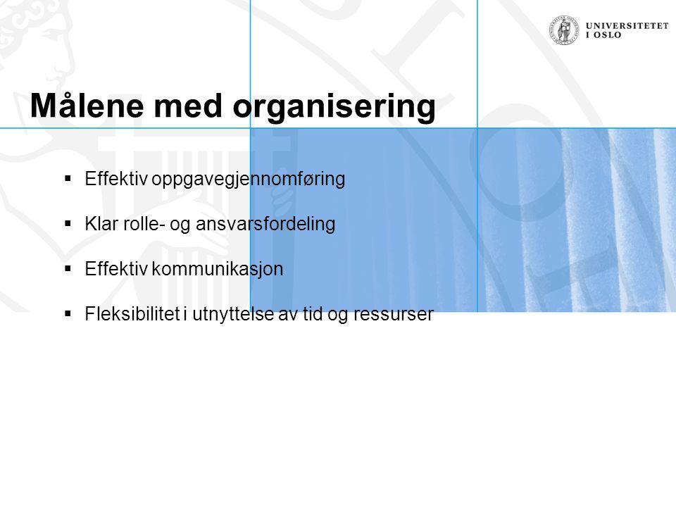 Målene med organisering  Effektiv oppgavegjennomføring  Klar rolle- og ansvarsfordeling  Effektiv kommunikasjon  Fleksibilitet i utnyttelse av tid