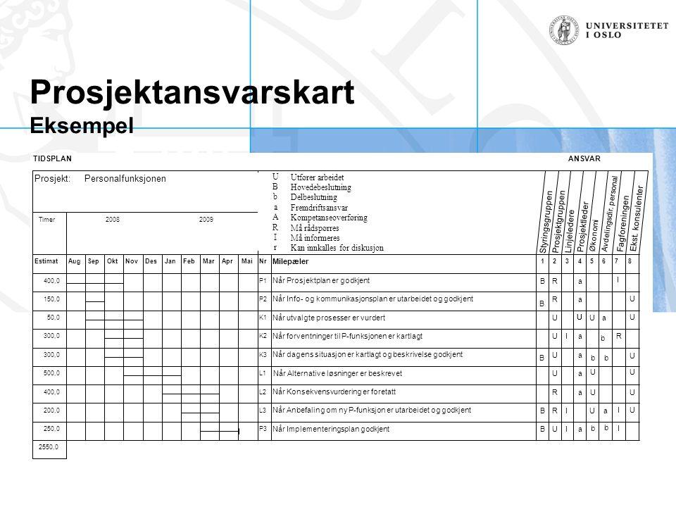 Prosjektansvarskart Eksempel TIDSPLANANSVAR U- Utfører arbeidet B - Hovedbeslutning b- Delbeslutning a- Framdriftsansvar A- Kompetanseoverføring R- Må