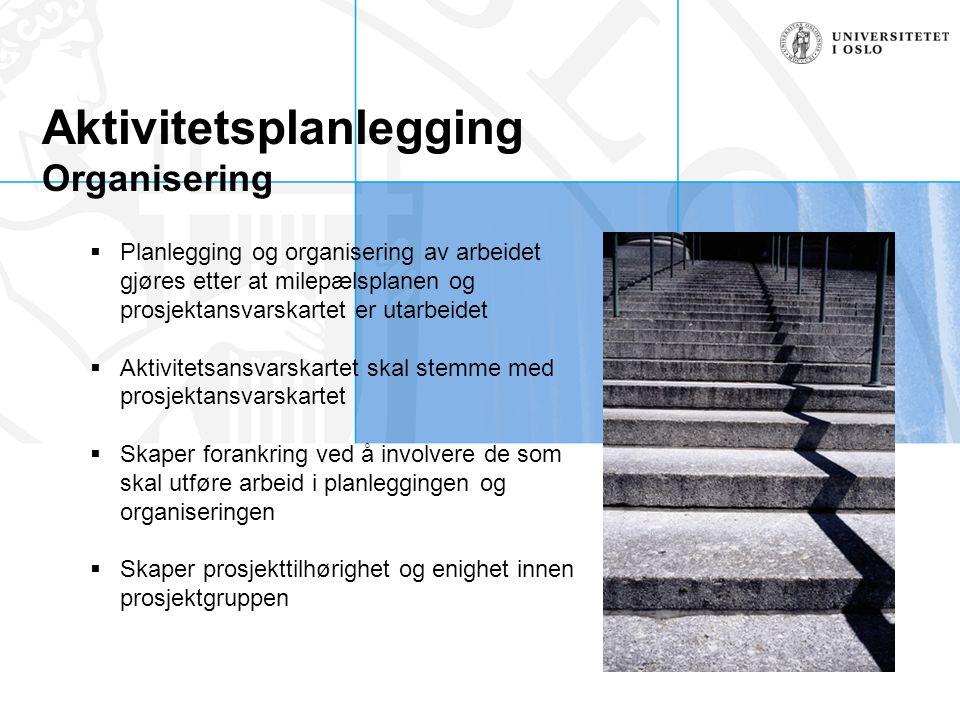 Aktivitetsplanlegging Organisering  Planlegging og organisering av arbeidet gjøres etter at milepælsplanen og prosjektansvarskartet er utarbeidet  A