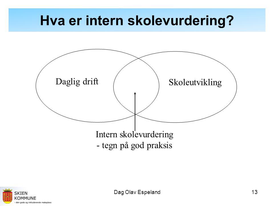 Dag Olav Espeland13 Hva er intern skolevurdering.