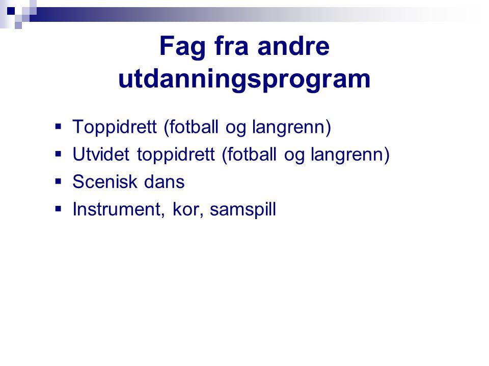 Fag fra andre utdanningsprogram  Toppidrett (fotball og langrenn)  Utvidet toppidrett (fotball og langrenn)  Scenisk dans  Instrument, kor, samspi