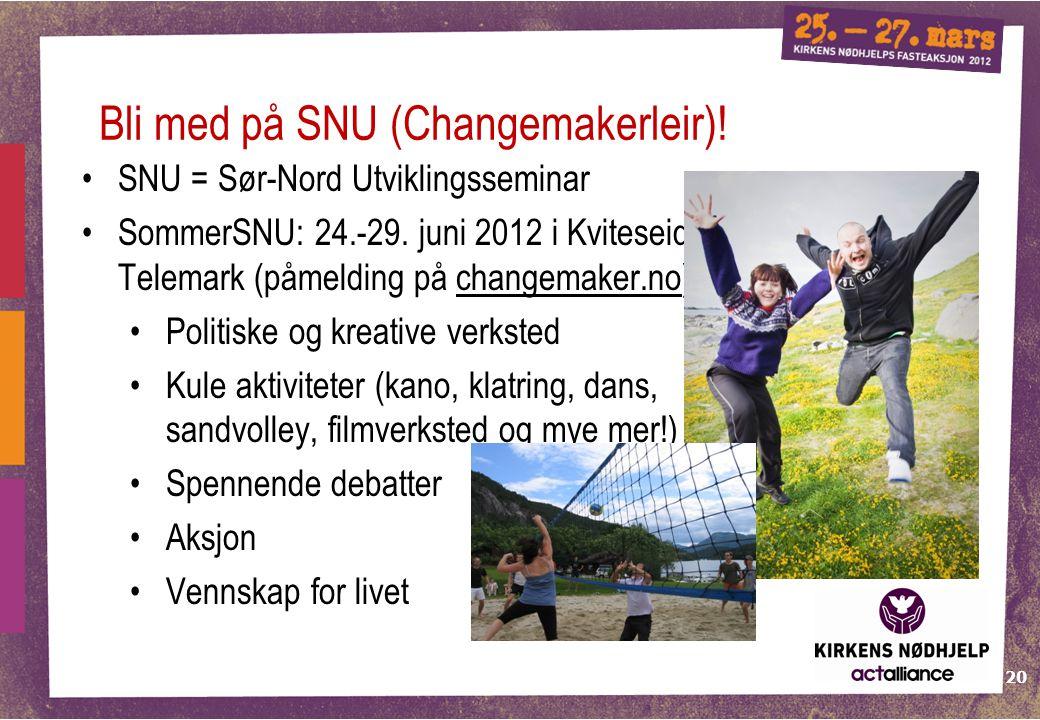 20 SNU = Sør-Nord Utviklingsseminar SommerSNU: 24.-29. juni 2012 i Kviteseid, Telemark (påmelding på changemaker.no) Politiske og kreative verksted Ku