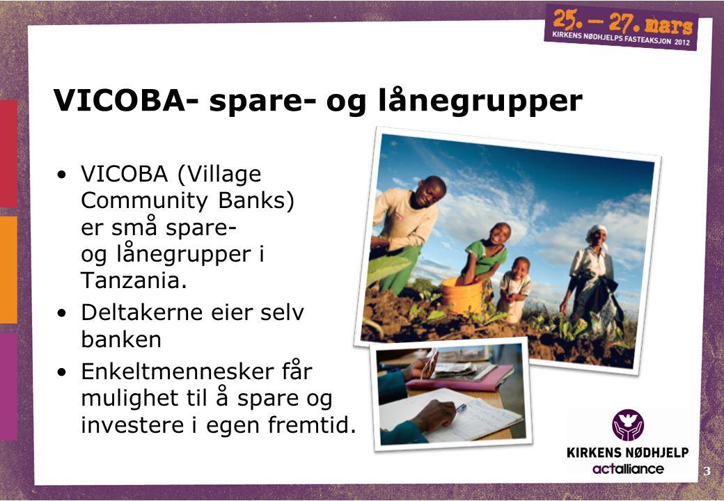 3 VICOBA- spare- og lånegrupper VICOBA (Village Community Banks) er små spare- og lånegrupper i Tanzania. Deltakerne eier selv banken Enkeltmennesker