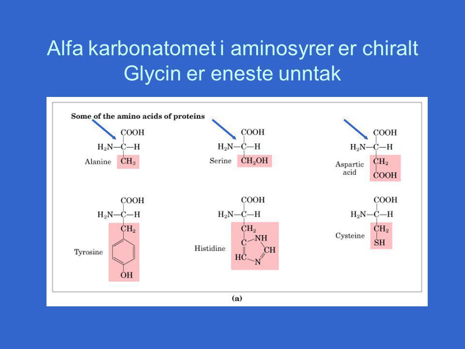 Alfa karbonatomet i aminosyrer er chiralt Glycin er eneste unntak