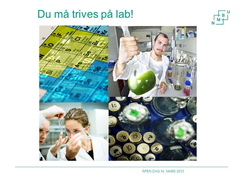 Bachelor i Matvitenskap og ernæring Cellebiologi, genetikk, generell kjemi, mikrobiologi, organisk kjemi, biokjemi, eksperimentell og anvendt biokjemi, prosessteknologi og tre råvare og teknologikurs.