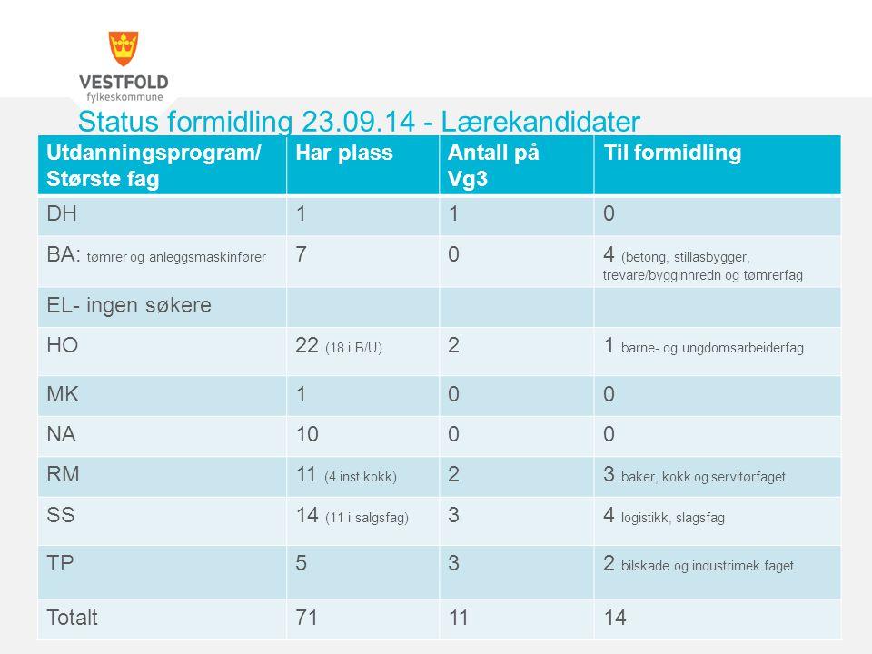 Utdanningsprogram/ Største fag Har plassAntall på Vg3 Til formidling DH110 BA: tømrer og anleggsmaskinfører 704 (betong, stillasbygger, trevare/byggin