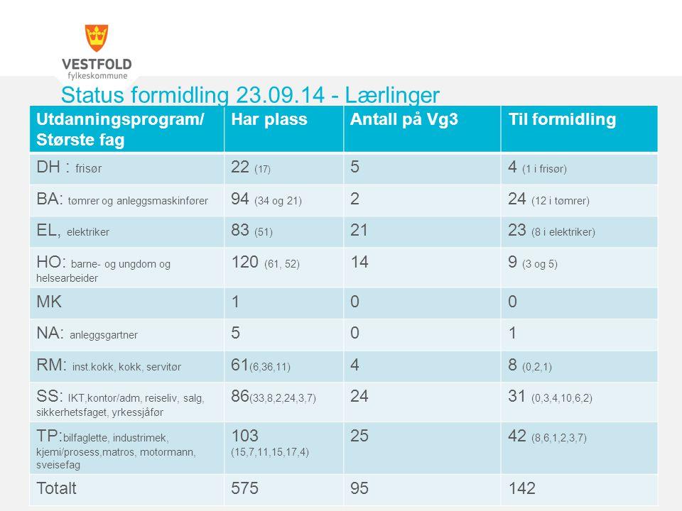 Utdanningsprogram/ Største fag Har plassAntall på Vg3Til formidling DH : frisør 22 ( 17) 54 (1 i frisør) BA: tømrer og anleggsmaskinfører 94 (34 og 21